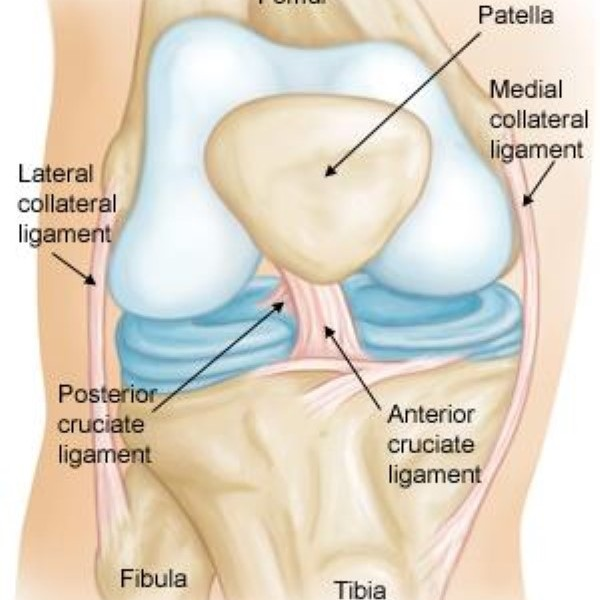 ACL Injury & Treatment 3